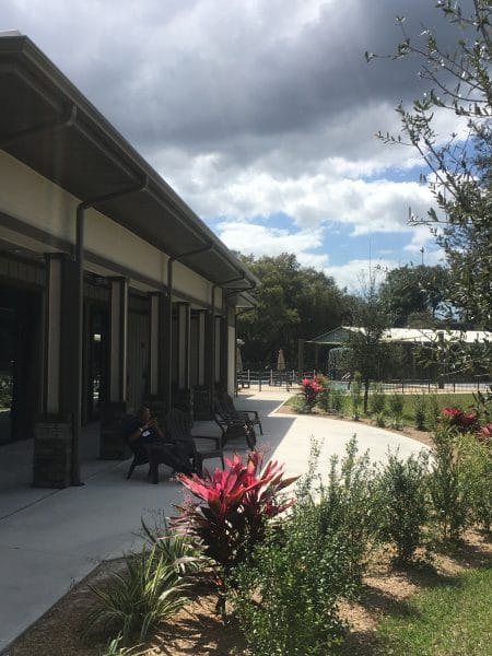 Program Center Exterior